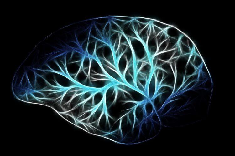 脳のつながりの絵